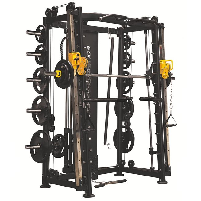Master Smith / Functional trainer X15