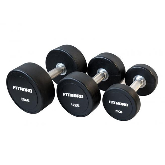 FitNord PU dumbbell (pair)